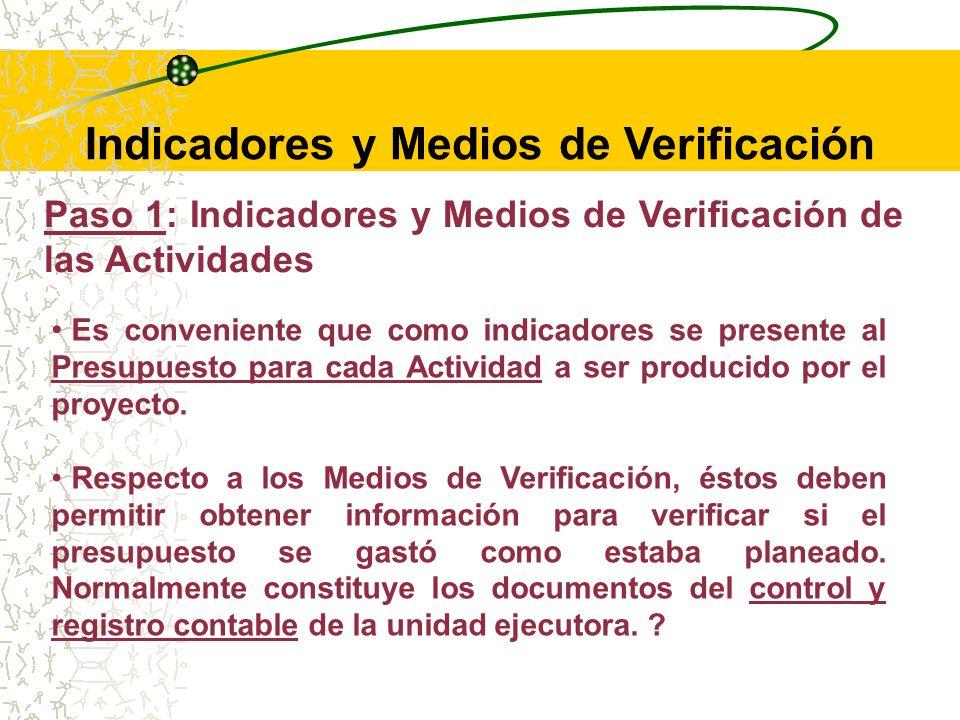 Paso 1: Indicadores y Medios de Verificación de las Actividades Los indicadores de este nivel son llamados Indicadores de Insumo.