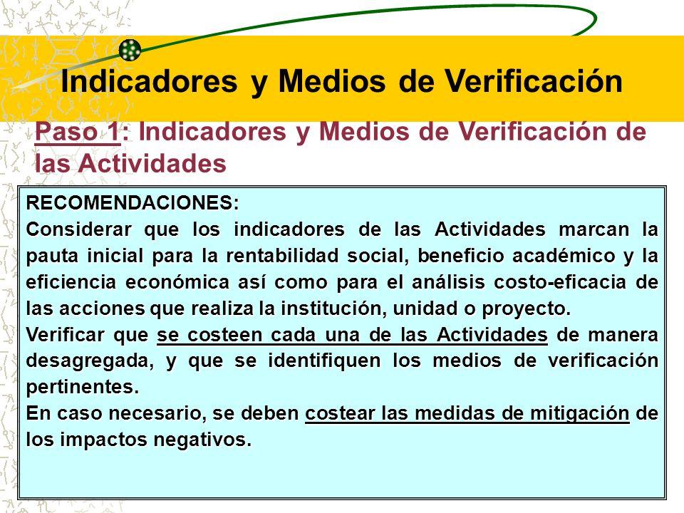 Paso 1: Indicadores y Medios de Verificación de las Actividades Es conveniente que como indicadores se presente al Presupuesto para cada Actividad a ser producido por el proyecto.