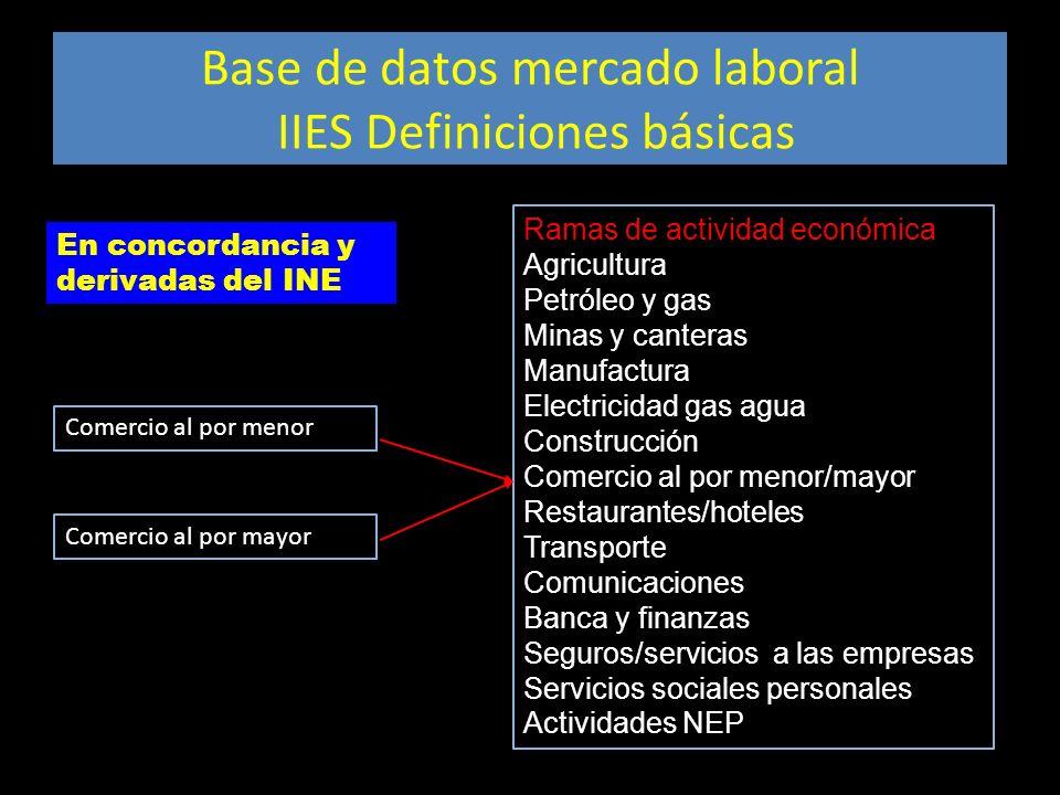 Base de datos mercado laboral IIES Definiciones básicas Ramas de actividad económica Agricultura Petróleo y gas Minas y canteras Manufactura Electrici