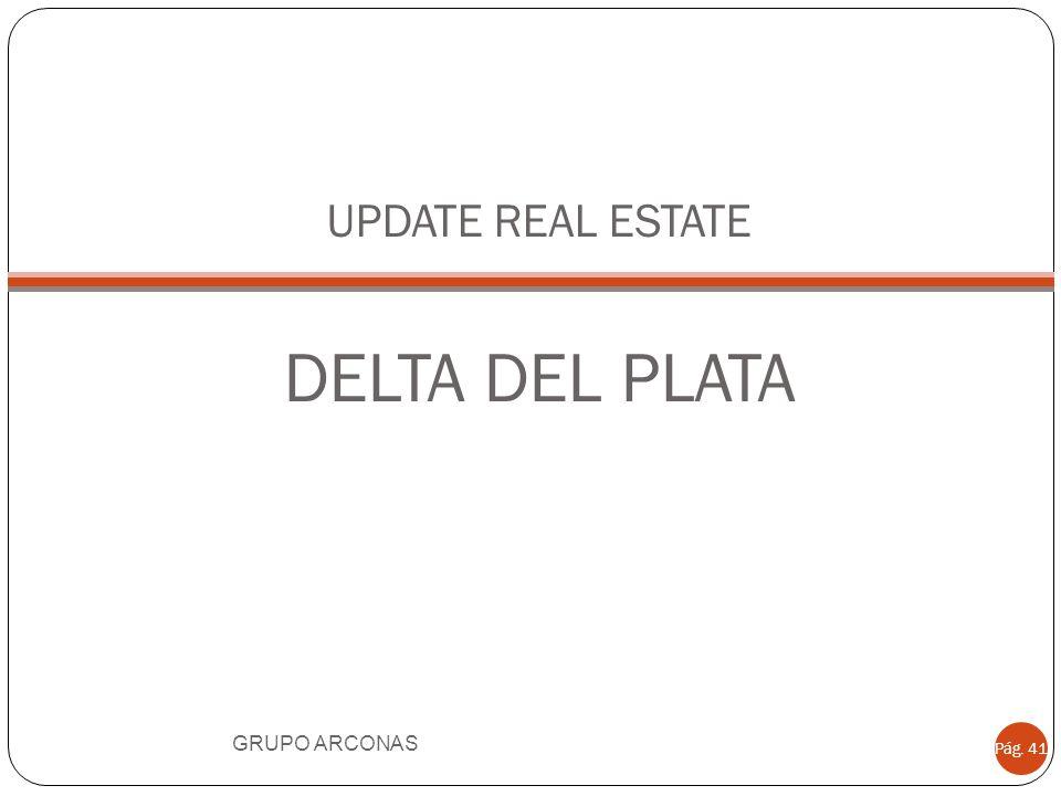UPDATE REAL ESTATE DELTA DEL PLATA GRUPO ARCONAS Pág. 41