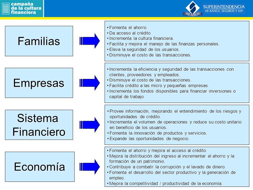 REMESAS A AMÉRICA LATINA Y EL CARIBE 2010 Programa de Capacitación a Docentes.