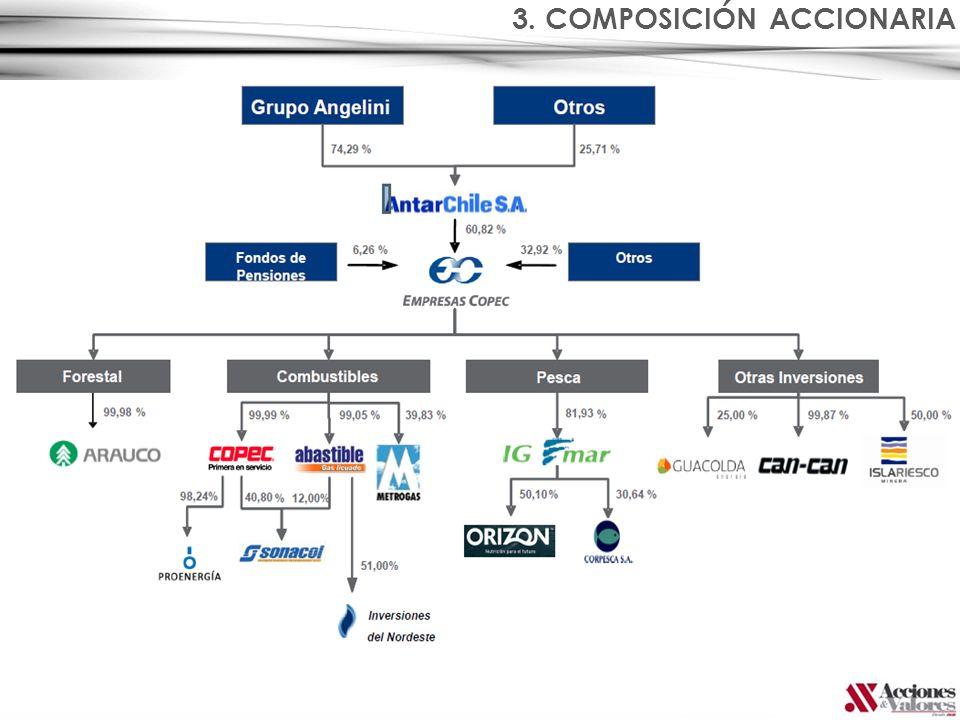 3. COMPOSICIÓN ACCIONARIA