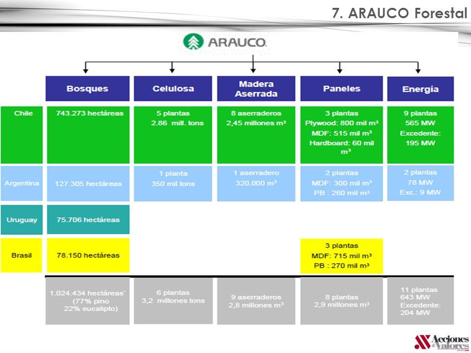 7. ARAUCO Forestal