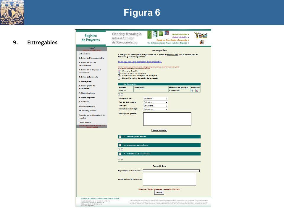 Figura 6 9.Entregables