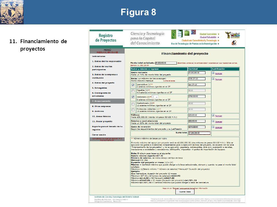 Figura 8 11.Financiamiento de proyectos