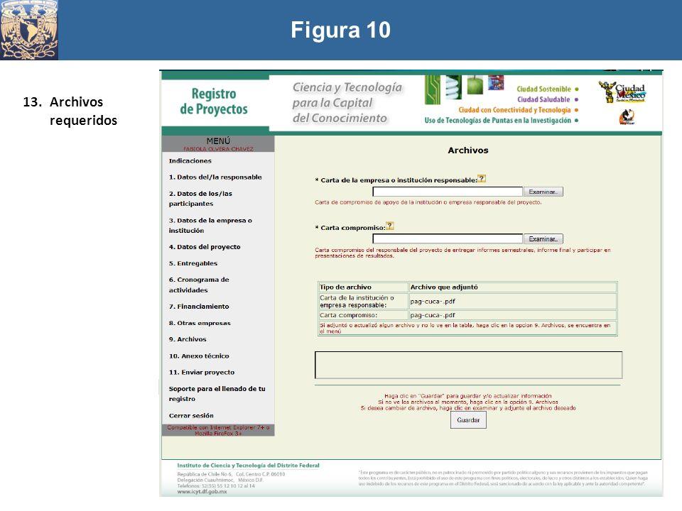 Figura 10 13.Archivos requeridos