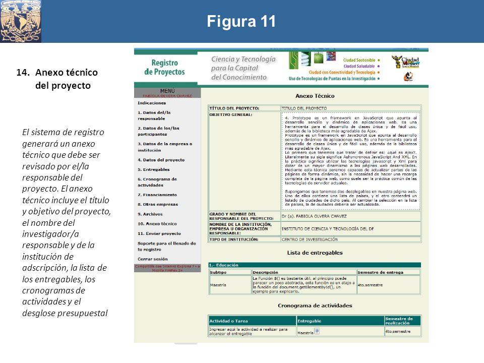 Figura 11 14.Anexo técnico del proyecto El sistema de registro generará un anexo técnico que debe ser revisado por el/la responsable del proyecto. El