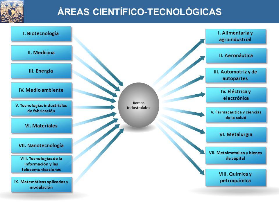 ÁREAS CIENTÍFICO-TECNOLÓGICAS I. Biotecnología II. Medicina III. Energía V. Tecnologías industriales de fabricación IV. Medio ambiente VI. Materiales