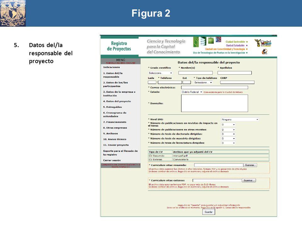 5.Datos del/la responsable del proyecto Figura 2