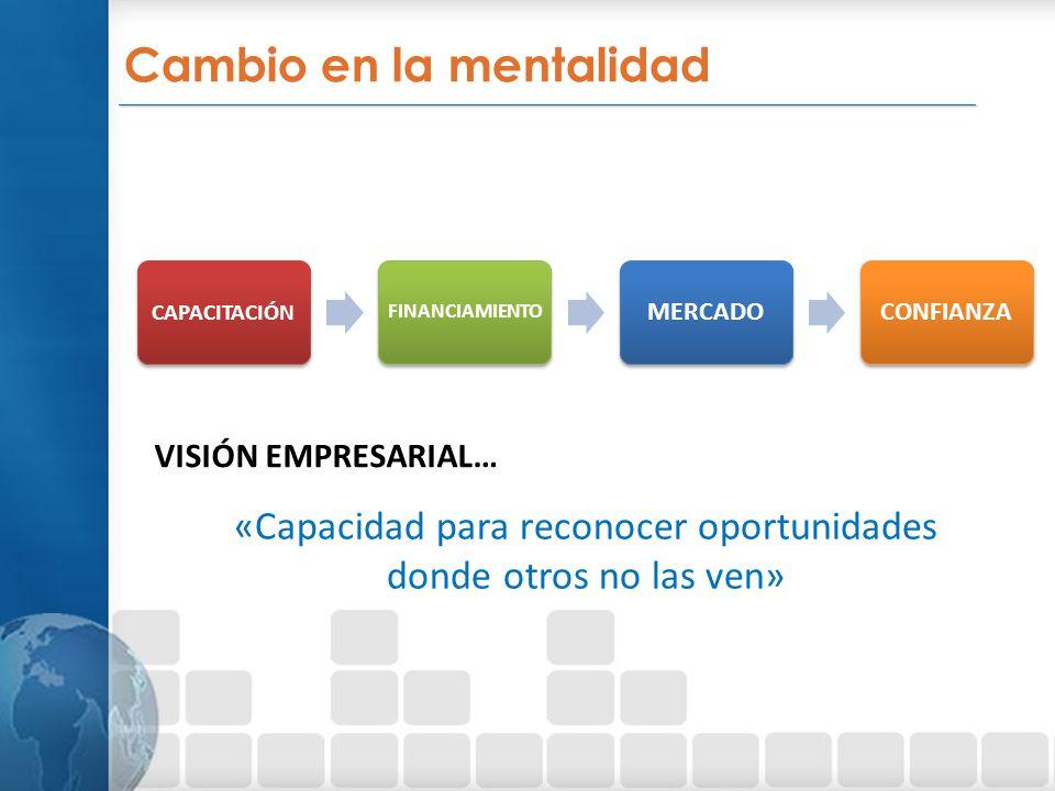 _________________________________________________________________ Cambio en la mentalidad CAPACITACIÓN FINANCIAMIENTO MERCADOCONFIANZA VISIÓN EMPRESARIAL… «Capacidad para reconocer oportunidades donde otros no las ven»