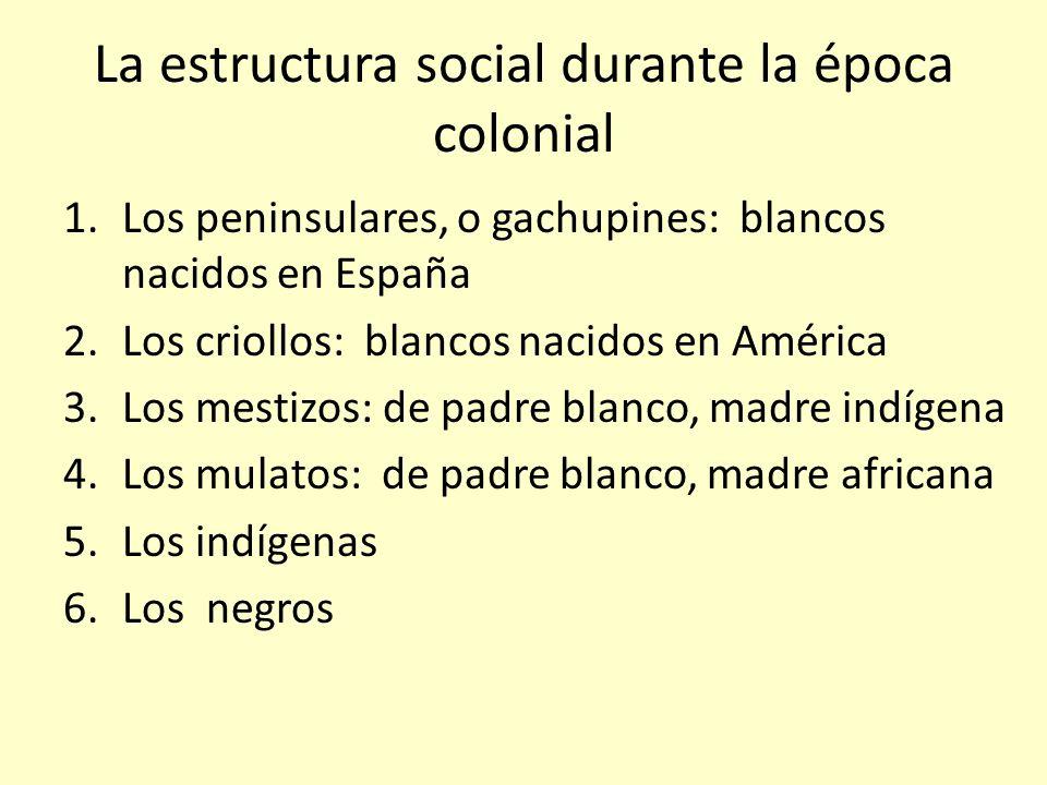 La estructura social durante la época colonial 1.Los peninsulares, o gachupines: blancos nacidos en España 2.Los criollos: blancos nacidos en América