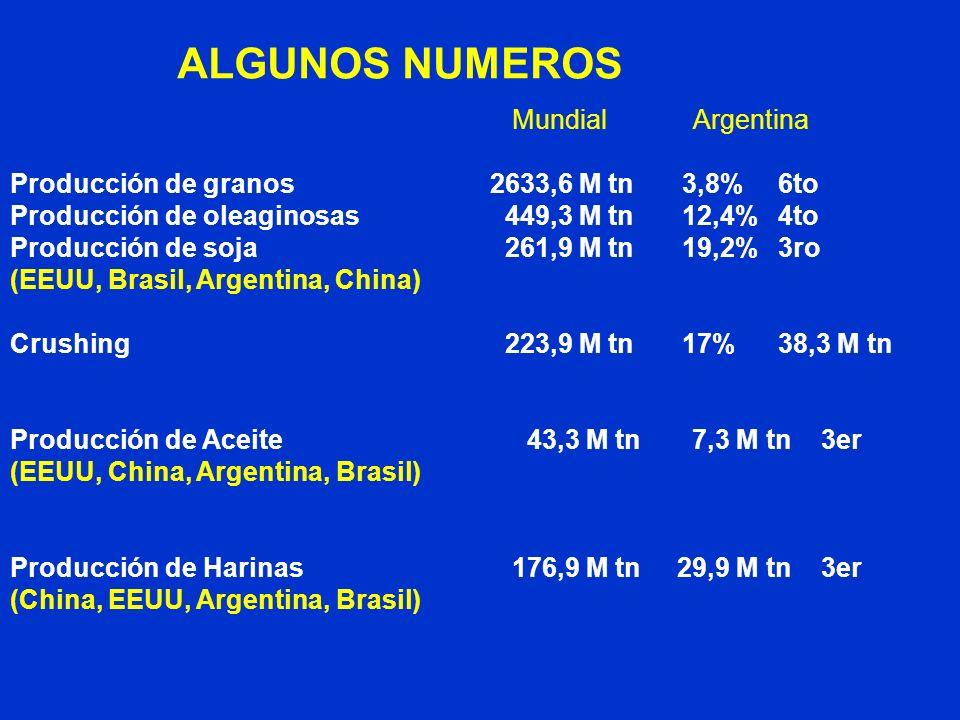 Mundial Argentina Producción de granos 2633,6 M tn3,8%6to Producción de oleaginosas 449,3 M tn12,4%4to Producción de soja 261,9 M tn19,2%3ro (EEUU, Br