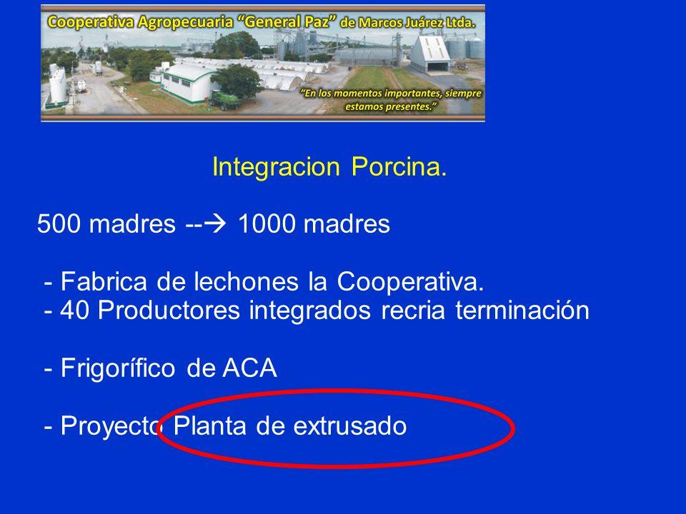 Integracion Porcina. 500 madres -- 1000 madres - Fabrica de lechones la Cooperativa. - 40 Productores integrados recria terminación - Frigorífico de A