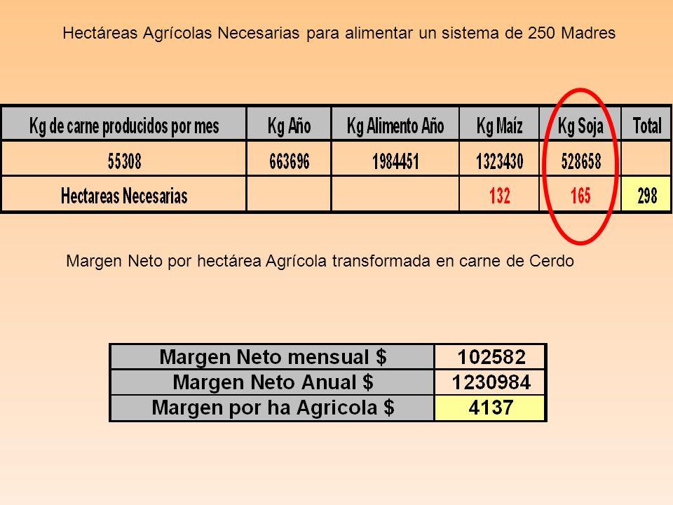 Hectáreas Agrícolas Necesarias para alimentar un sistema de 250 Madres Margen Neto por hectárea Agrícola transformada en carne de Cerdo