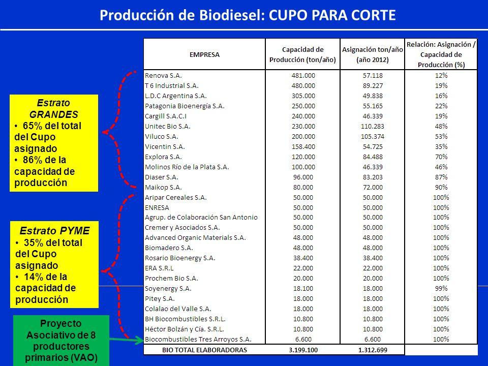 Producción de Biodiesel: CUPO PARA CORTE Estrato PYME 35% del total del Cupo asignado 14% de la capacidad de producción Estrato GRANDES 65% del total