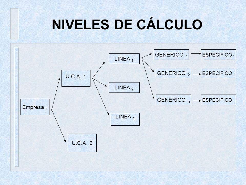 NIVELES DE CÁLCULO Empresa 1 U.C.A. 1 LINEA 1 U.C.A. 2 LINEA 2 LINEA n GENERICO 1 GENERICO 2 GENERICO n ESPECIFICO 1