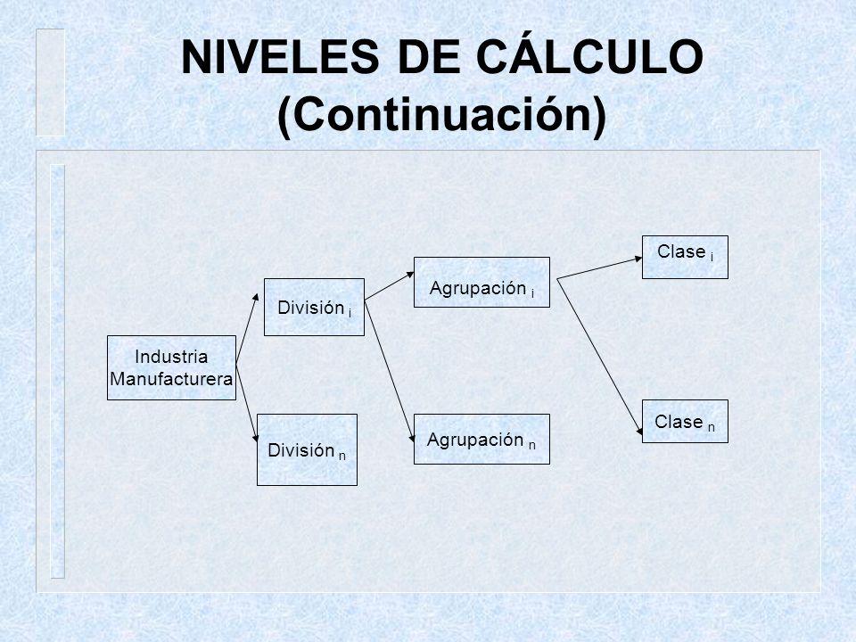 NIVELES DE CÁLCULO (Continuación) Industria Manufacturera División i División n Agrupación i Agrupación n Clase i Clase n
