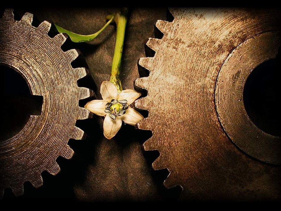 En pleno auge de la expansión colonial y de la revolución industrial se había producido