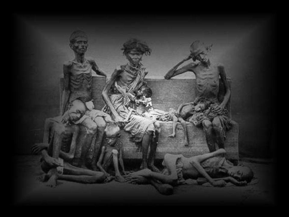 Hubo alrededor de 30 millones de muertes en la India, en la década de 1870. El entonces virrey de la India, Lord Lytton, era dawinista social: