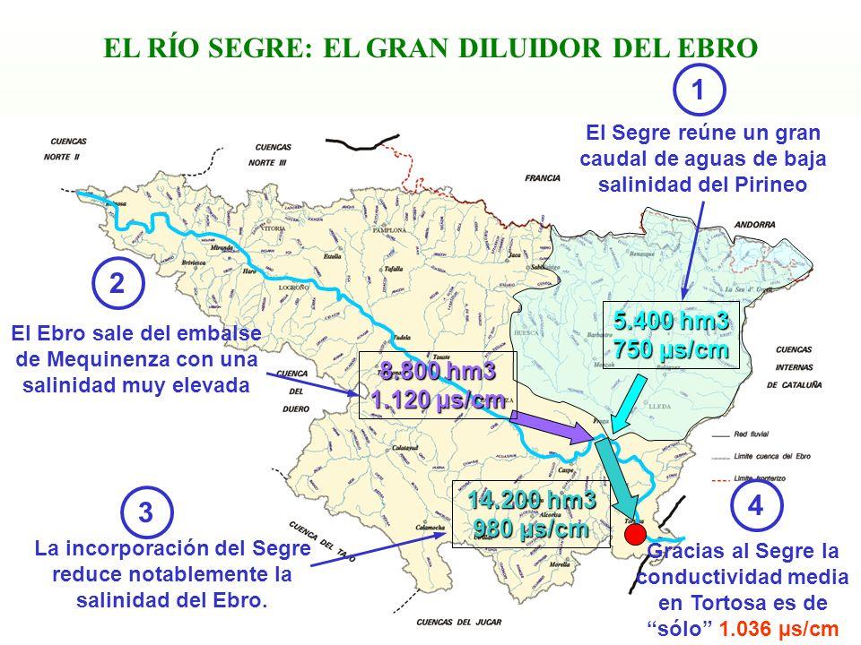 13 EL RÍO SEGRE: EL GRAN DILUIDOR DEL EBRO La incorporación del Segre reduce notablemente la salinidad del Ebro. El Segre reúne un gran caudal de agua