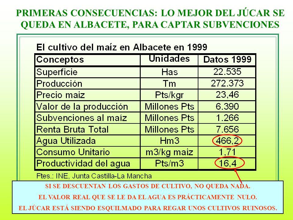 6 PRIMERAS CONSECUENCIAS: LO MEJOR DEL JÚCAR SE QUEDA EN ALBACETE, PARA CAPTAR SUBVENCIONES SI SE DESCUENTAN LOS GASTOS DE CULTIVO, NO QUEDA NADA. EL