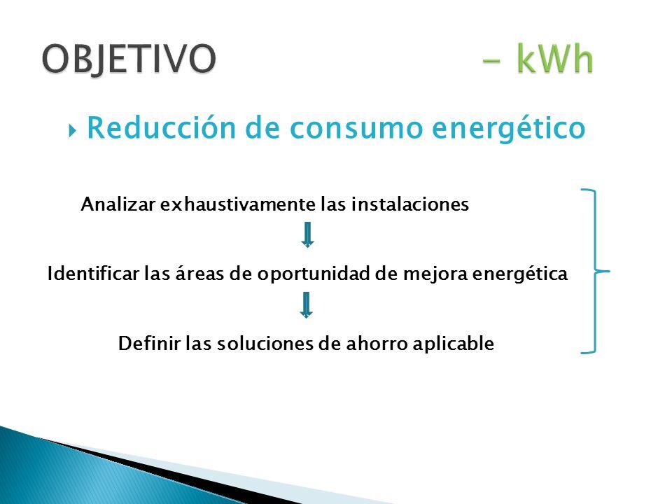 Reducción de consumo energético Analizar exhaustivamente las instalaciones Identificar las áreas de oportunidad de mejora energética Definir las soluciones de ahorro aplicable