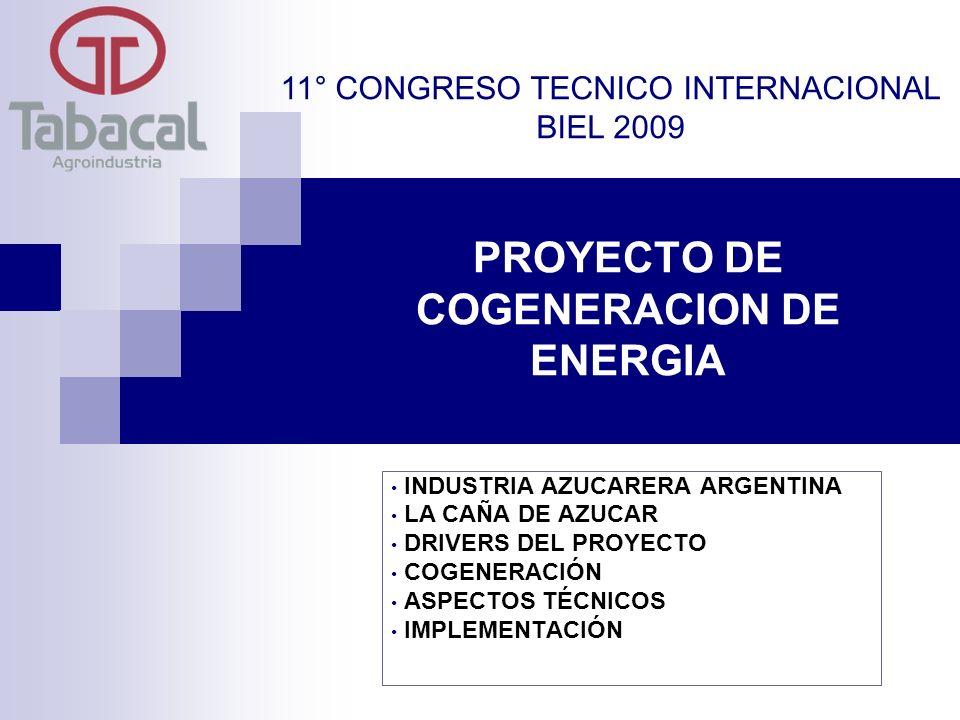 PROYECTO DE COGENERACION DE ENERGIA INDUSTRIA AZUCARERA ARGENTINA LA CAÑA DE AZUCAR DRIVERS DEL PROYECTO COGENERACIÓN ASPECTOS TÉCNICOS IMPLEMENTACIÓN 11° CONGRESO TECNICO INTERNACIONAL BIEL 2009