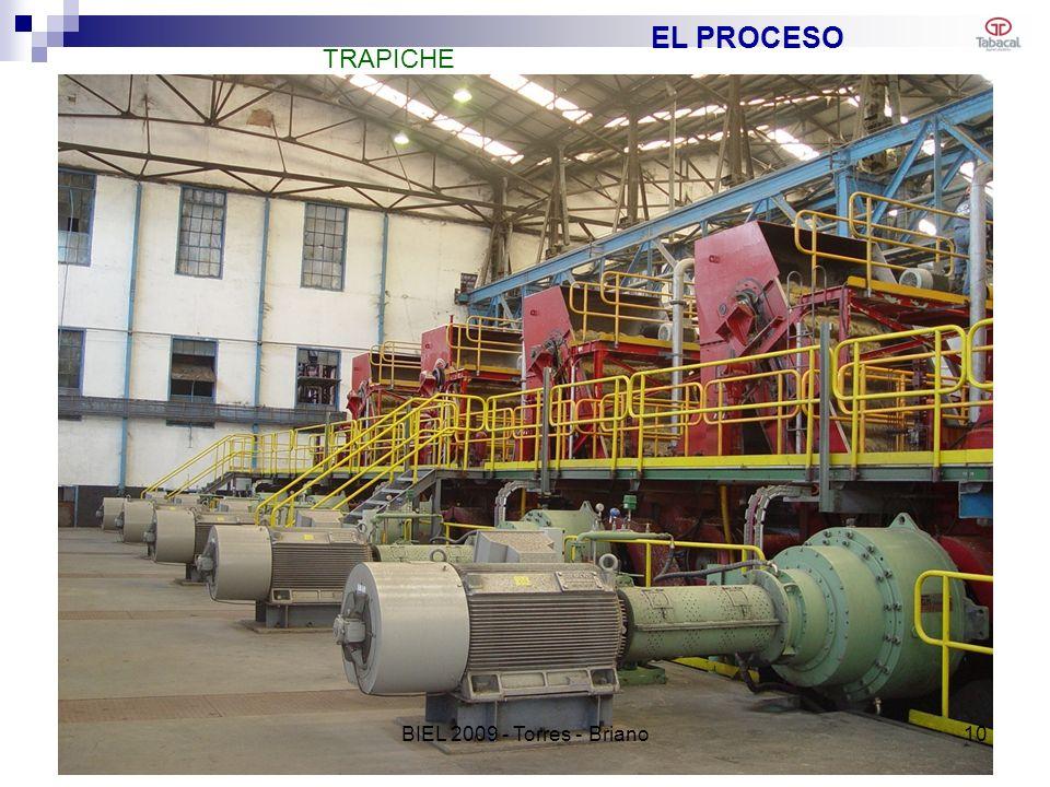 EL PROCESO TRAPICHE 10BIEL 2009 - Torres - Briano