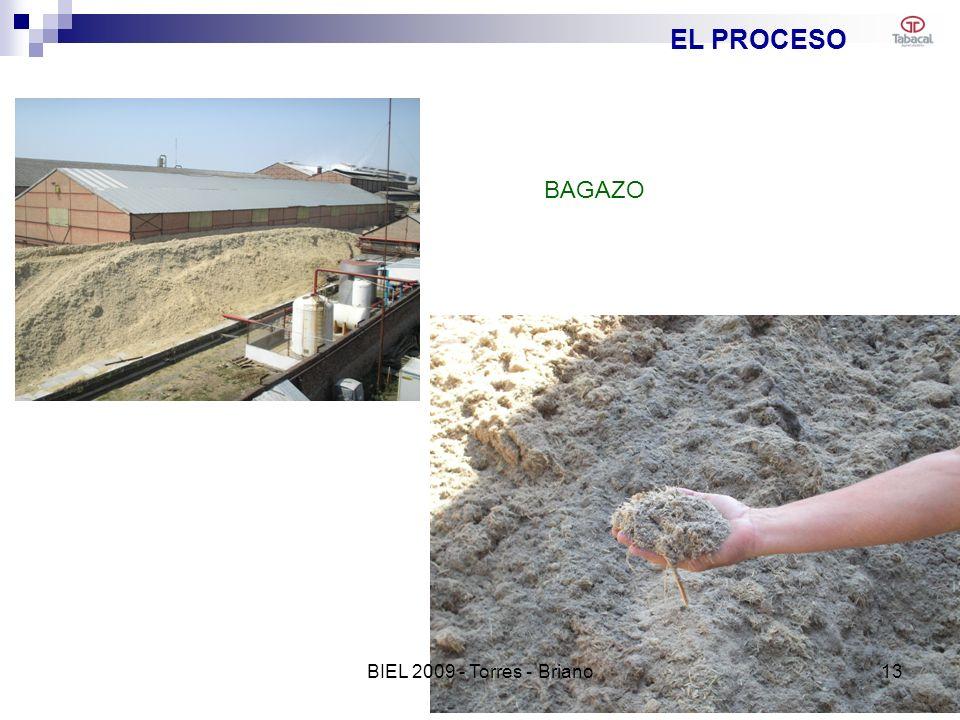 EL PROCESO BAGAZO 13BIEL 2009 - Torres - Briano
