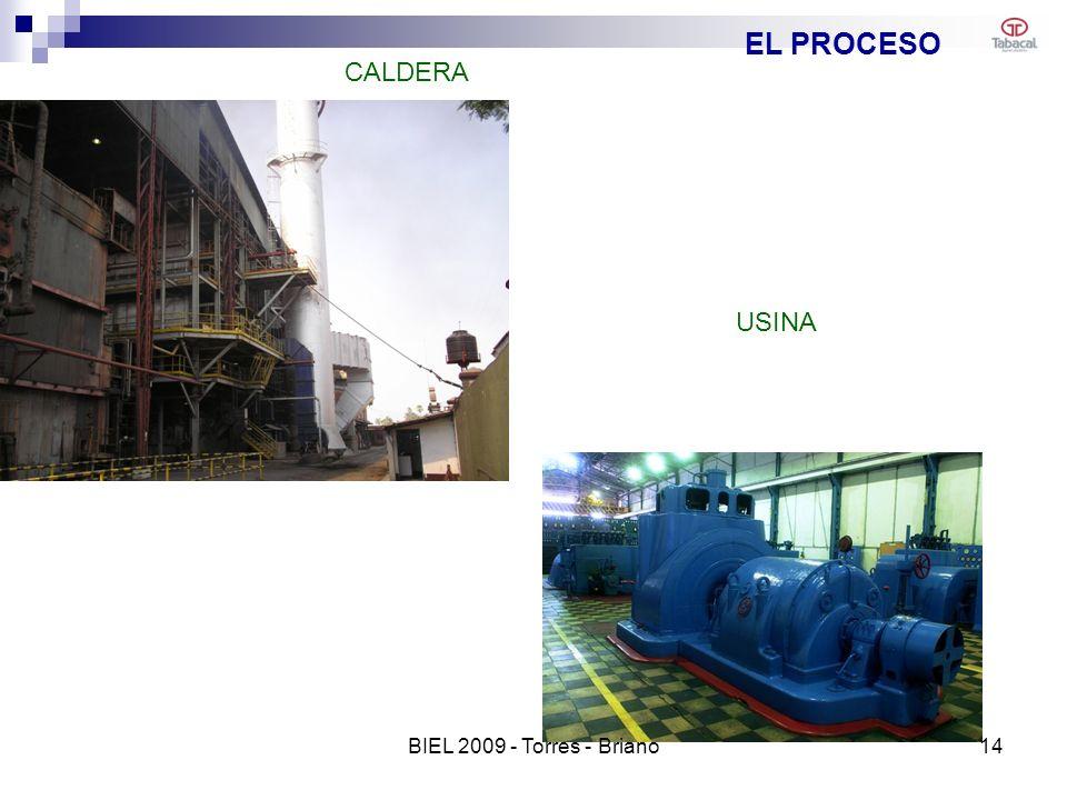EL PROCESO CALDERA USINA 14BIEL 2009 - Torres - Briano