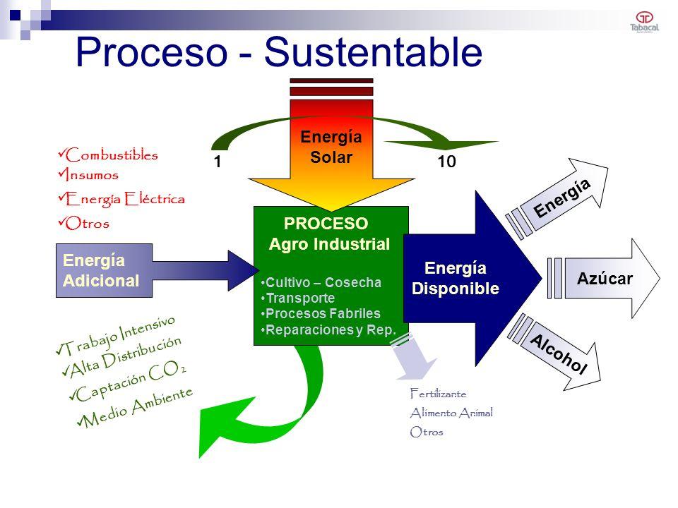 PROCESO Agro Industrial Cultivo – Cosecha Transporte Procesos Fabriles Reparaciones y Rep. Energía Solar Energía Disponible Proceso - Sustentable Ener