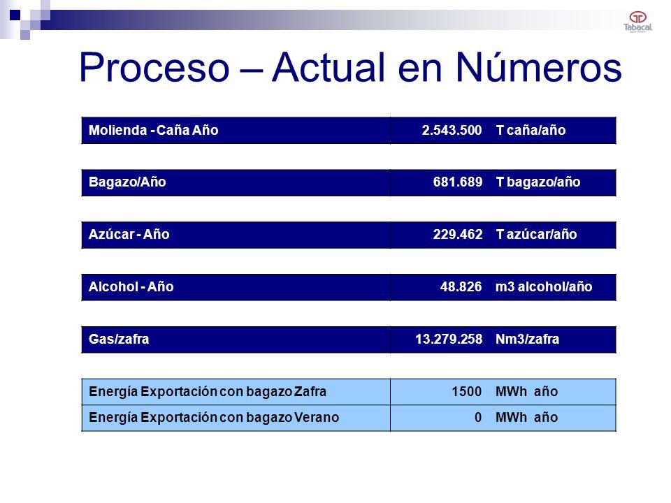 Molienda - Caña Año2.543.500T caña/año Bagazo/Año681.689T bagazo/año Azúcar - Año229.462T azúcar/año Alcohol - Año48.826m3 alcohol/año Gas/zafra13.279.258Nm3/zafra Energía Exportación con bagazo Zafra1500MWh año Energía Exportación con bagazo Verano0MWh año Proceso – Actual en Números