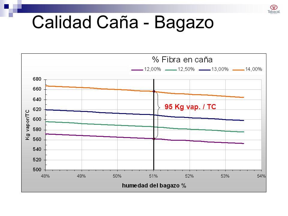Calidad Caña - Bagazo 95 Kg vap. / TC