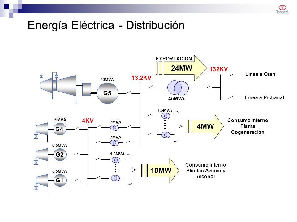 Energía Eléctrica - Distribución G5 G4G2G1 13.2KV 4KV 132KV Consumo Interno Planta Cogeneración Consumo Interno Plantas Azúcar y Alcohol Línea a Oran Línea a Pichanal 45MVA 15MVA 1,6MVA 7MVA 40MVA 6,5MVA 4MW 10MW 24MW EXPORTACIÓN 7MVA