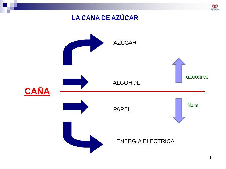 CAÑA AZUCAR ALCOHOL ENERGIA ELECTRICA LA CAÑA DE AZÚCAR PAPEL azúcares fibra 6