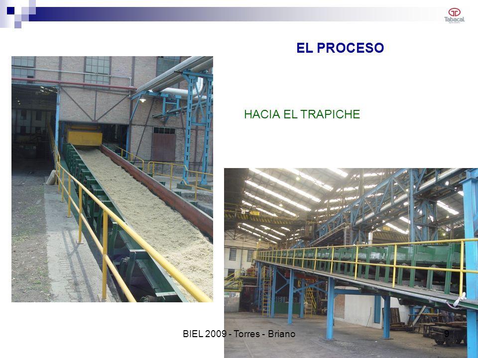 EL PROCESO HACIA EL TRAPICHE 9BIEL 2009 - Torres - Briano