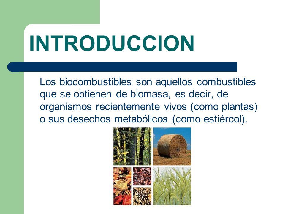 TIPOS DE BIOCOMBUSTIBLES El biodiesel es el combustible renovable que tiene el mayor potencial de desarrollo en todo el mundo.