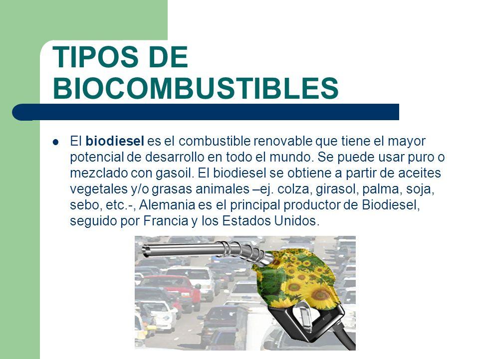TIPOS DE BIOCOMBUSTIBLES El bioetanol, también llamado etanol de biomasa, se obtiene a partir de maíz, sorgo, caña de azúcar o remolacha.