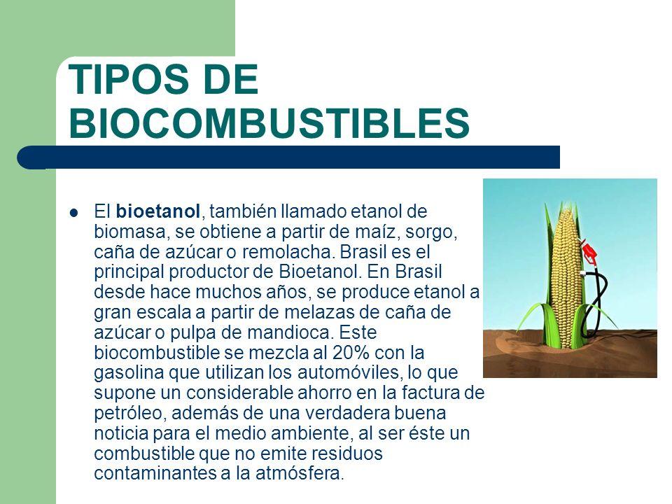 TIPOS DE BIOCOMBUSTIBLES El biogás es un gas combustible que se genera en medios naturales por las reacciones de biodegradación de la materia orgánica, mediante la acción de microorganismos.