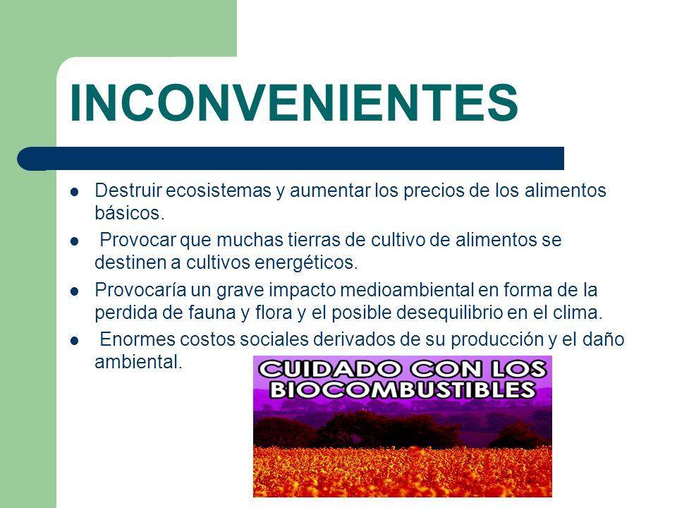 INCONVENIENTES Destruir ecosistemas y aumentar los precios de los alimentos básicos. Provocar que muchas tierras de cultivo de alimentos se destinen a
