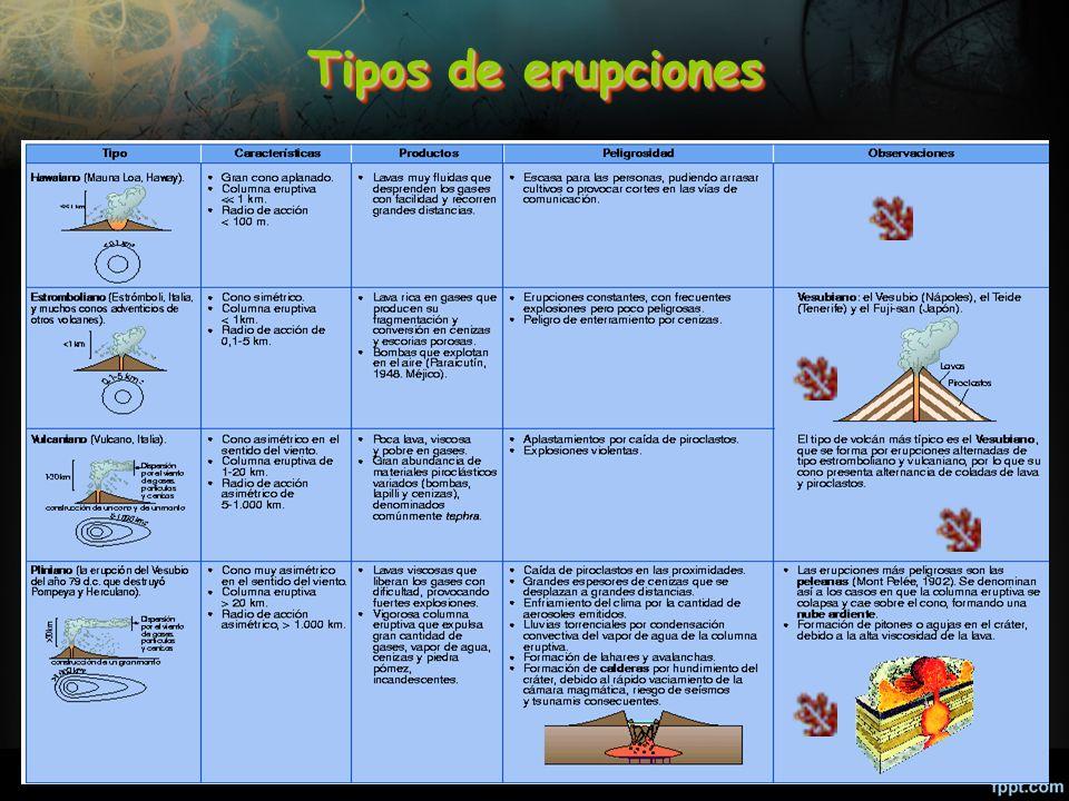 33 Tipos de erupciones