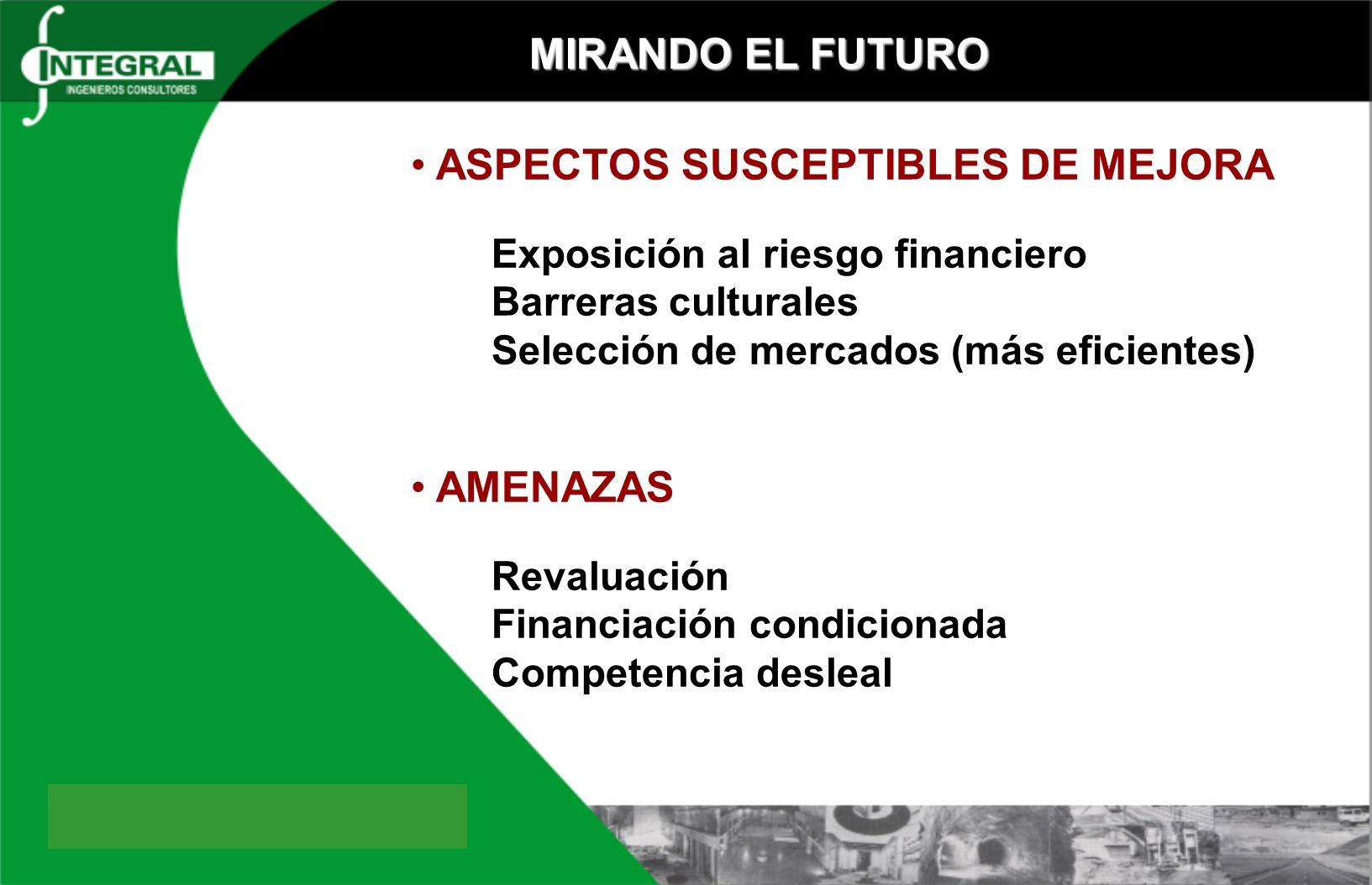 MIRANDO EL FUTURO ASPECTOS SUSCEPTIBLES DE MEJORA Exposición al riesgo financiero Barreras culturales Selección de mercados (más eficientes) AMENAZAS