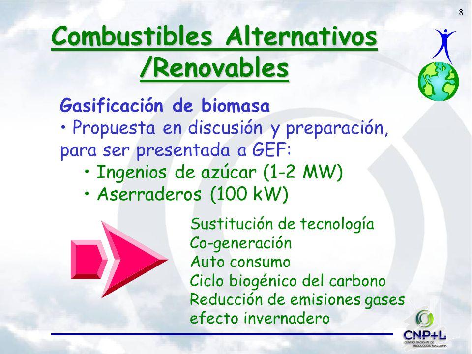 8 Combustibles Alternativos /Renovables Gasificación de biomasa Propuesta en discusión y preparación, para ser presentada a GEF: Ingenios de azúcar (1-2 MW) Aserraderos (100 kW) Sustitución de tecnología Co-generación Auto consumo Ciclo biogénico del carbono Reducción de emisiones gases efecto invernadero