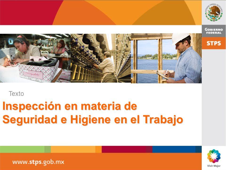 Inspección en materia de Seguridad e Higiene en el Trabajo Texto