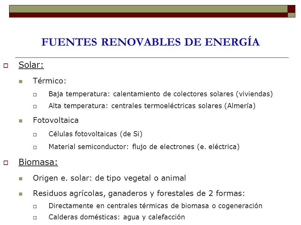 FUENTES RENOVABLES DE ENERGÍA Solar: Térmico: Baja temperatura: calentamiento de colectores solares (viviendas) Alta temperatura: centrales termoeléct
