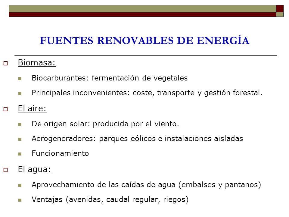 FUENTES RENOVABLES DE ENERGÍA Biomasa: Biocarburantes: fermentación de vegetales Principales inconvenientes: coste, transporte y gestión forestal. El