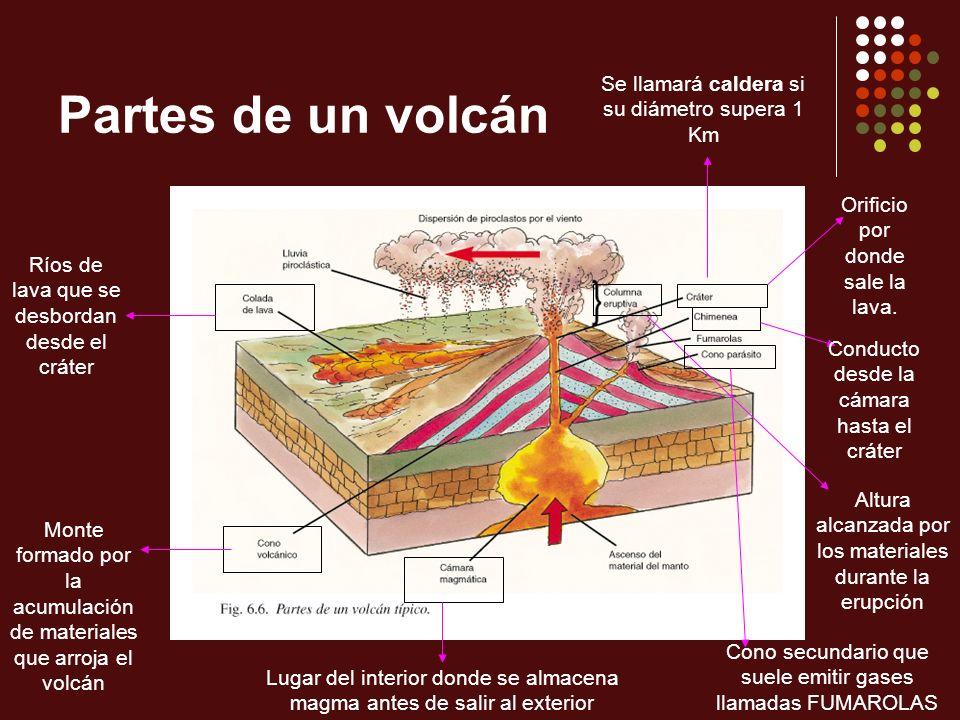 Partes de un volcán Orificio por donde sale la lava. Se llamará caldera si su diámetro supera 1 Km Monte formado por la acumulación de materiales que