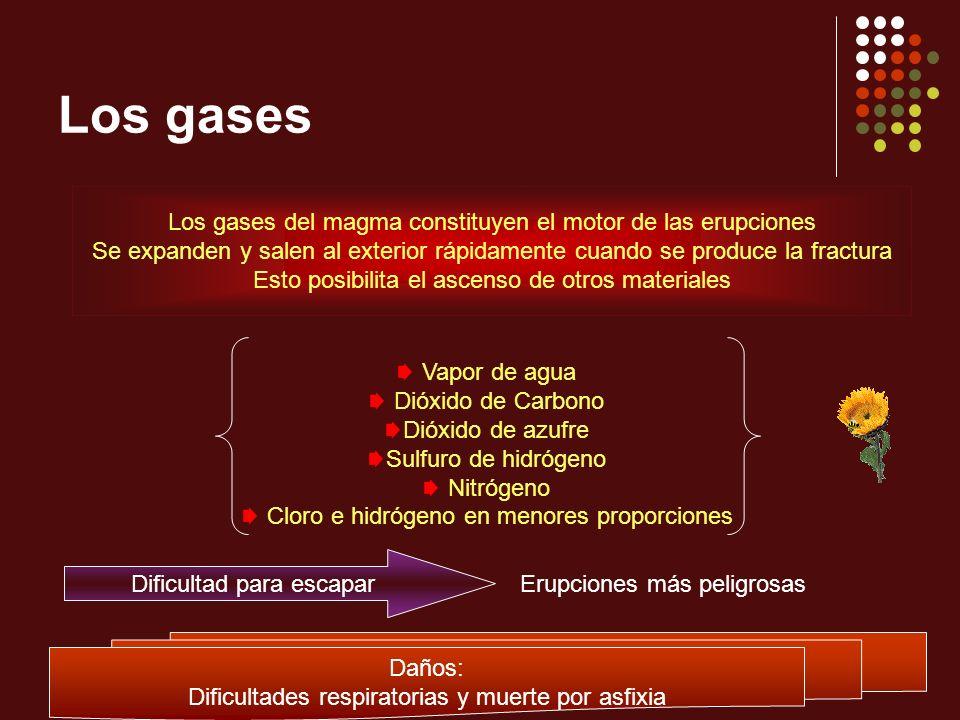 Los gases Los gases del magma constituyen el motor de las erupciones Se expanden y salen al exterior rápidamente cuando se produce la fractura Esto po