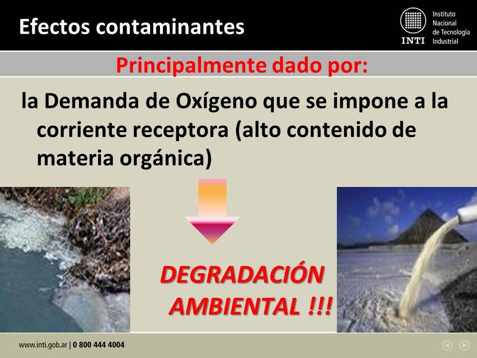 Efectos contaminantes la Demanda de Oxígeno que se impone a la corriente receptora (alto contenido de materia orgánica) DEGRADACIÓN AMBIENTAL !!! AMBI