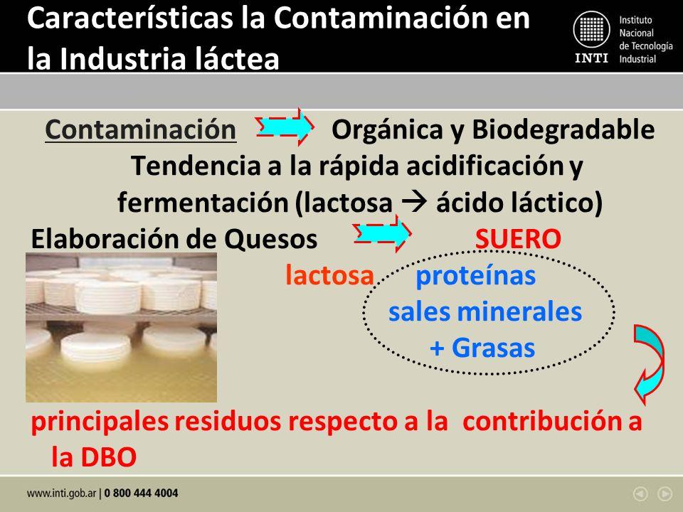 Características la Contaminación en la Industria láctea Contaminación Orgánica y Biodegradable Tendencia a la rápida acidificación y fermentación (lactosa ácido láctico) Elaboración de Quesos SUERO lactosa proteínas sales minerales + Grasas principales residuos respecto a la contribución a la DBO